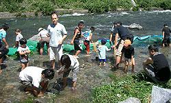 24川祭り3.jpg