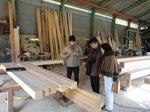 K様木材検査1.JPG